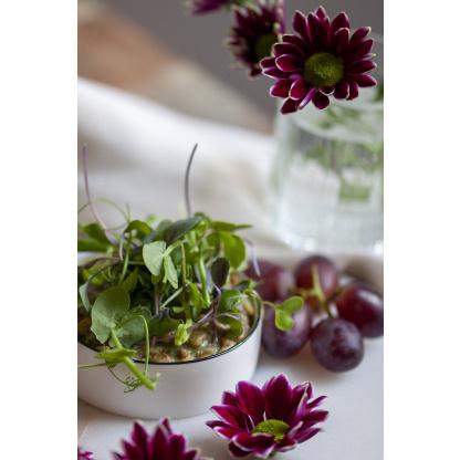 Sojaflocken Spinat Mix in Schüssel und garniert